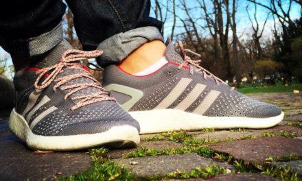 Adidas Consortium Pure Boost Primeknit