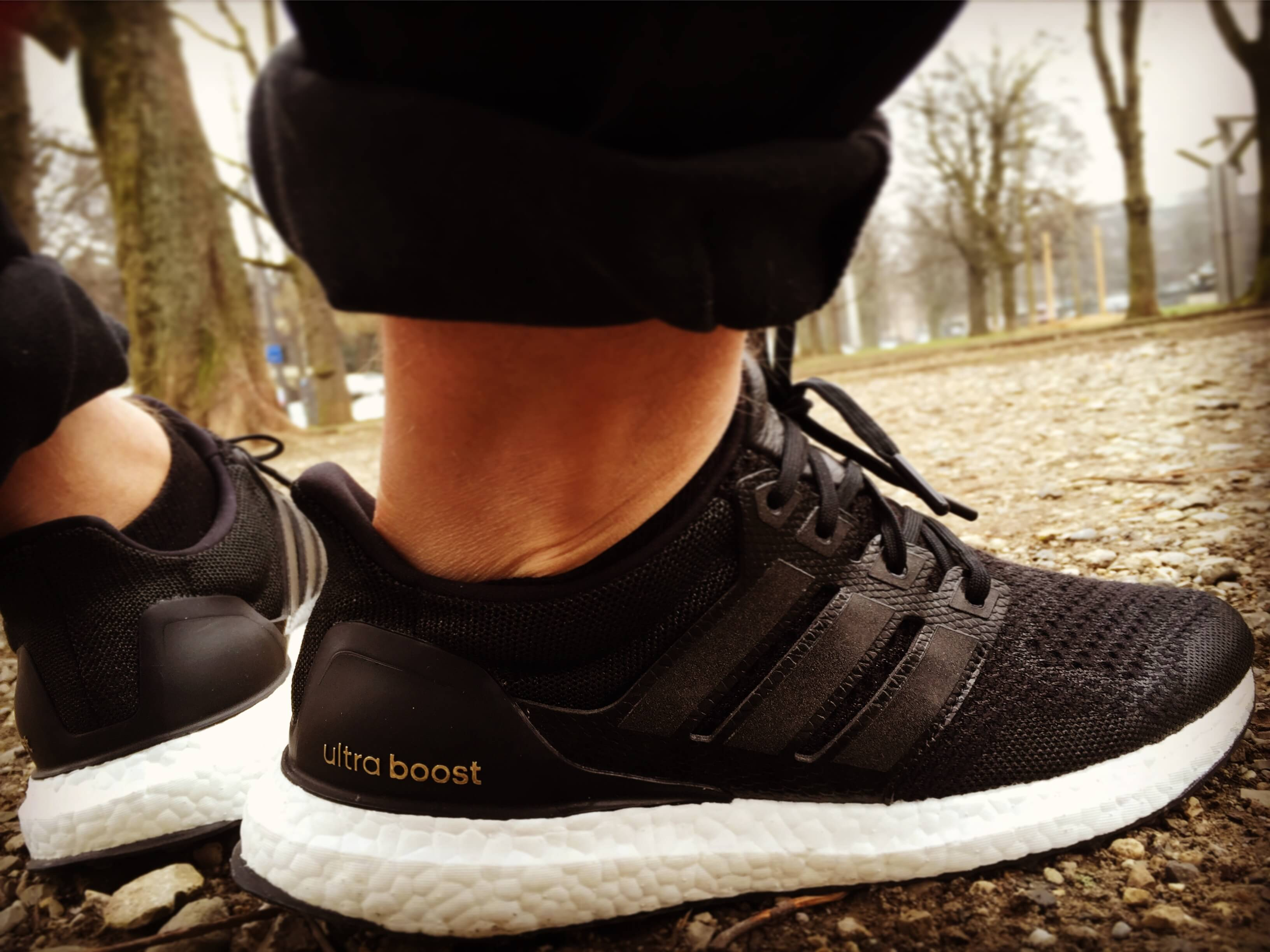 Adidas-Ultra Boost-J&D-Collective-Rear-View-Benstah-Onfeet